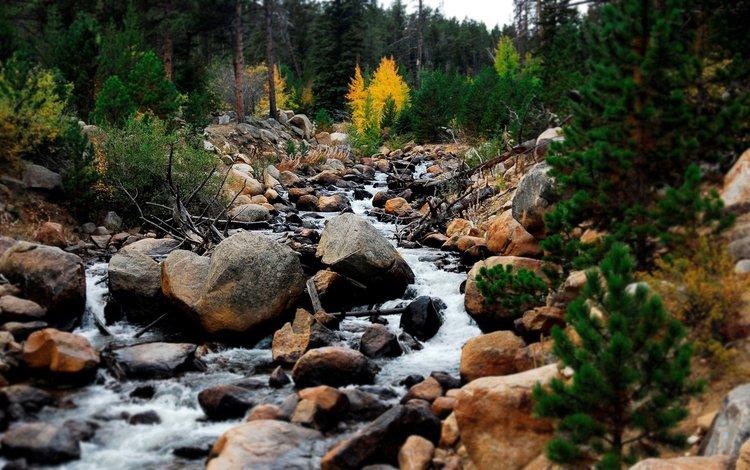 небо, поток, деревья, вода, горы, природа, камни, пейзаж, ручей, the sky, trees, water, mountains, nature, stones, landscape, stream