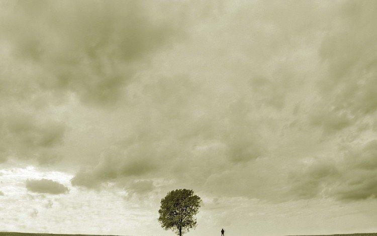 дерево, грусть, человек, tree, sadness, people