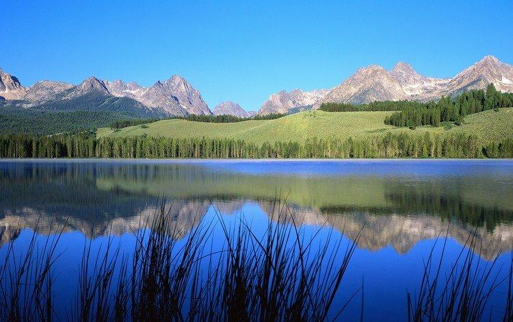 небо, деревья, река, горы, природа, пейзаж, the sky, trees, river, mountains, nature, landscape