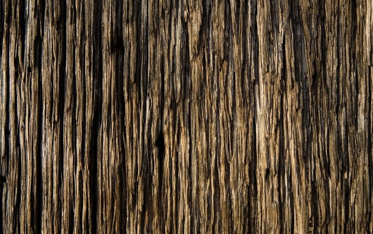 дерево, доска, текстур, tree, board, textures