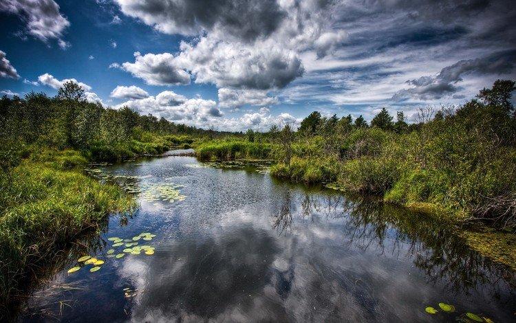 облака, деревья, вода, болото, clouds, trees, water, swamp