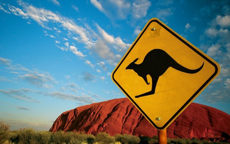австралия, знак, кенгуру, australia, sign, kangaroo