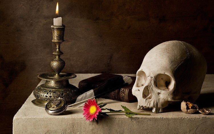 череп, свеча, книга, skull, candle, book