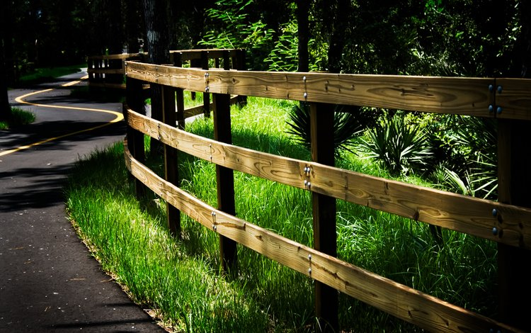 дорога, лес, забор, road, forest, the fence