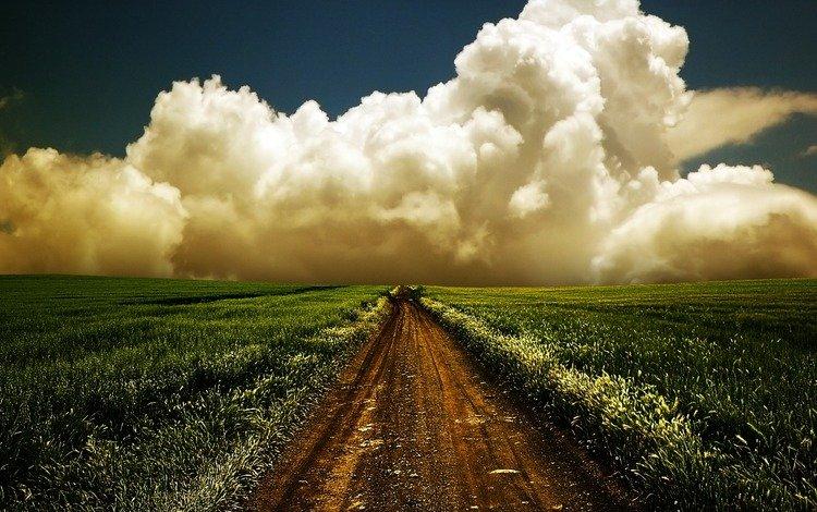 Красивая дорога в поле