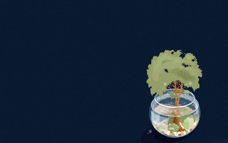 вода, дерево, тень, аквариум, water, tree, shadow, aquarium