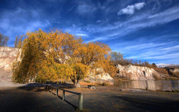 небо, дерево, осень, новая зеландия, the sky, tree, autumn, new zealand