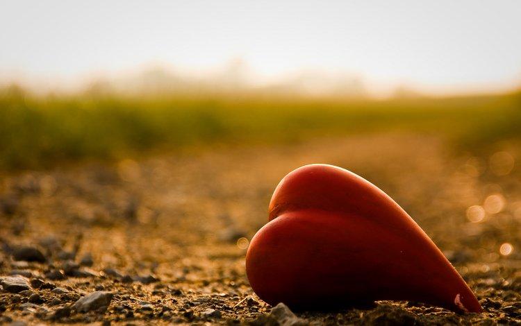 дорога, лето, сердце, road, summer, heart