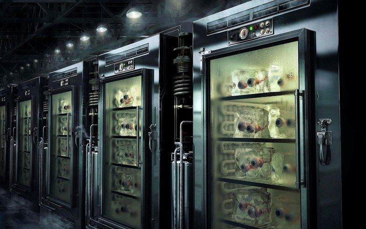 склад, холодильник, органы, warehouse, refrigerator, bodies