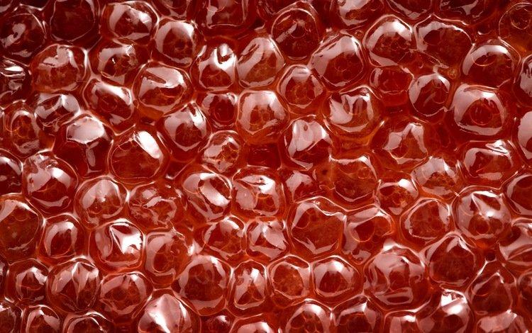 пузыри, красный, икра, bubbles, red, caviar