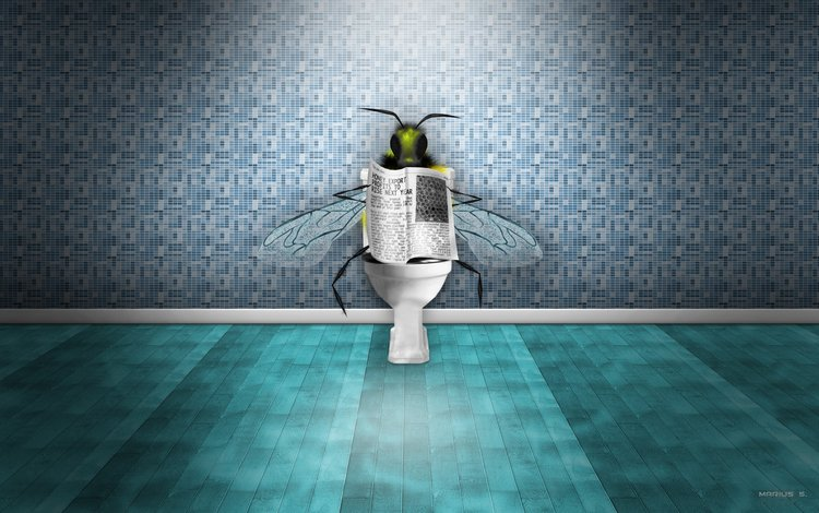 newspaper, bee, news, toilet