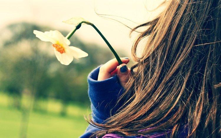 девушка, настроение, цветок, нарцисс, длинные волосы, girl, mood, flower, narcissus, long hair