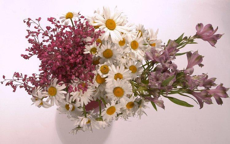 цветы, ромашки, букет, ваза, полевые цветы, композиция, альстромерия, flowers, chamomile, bouquet, vase, wildflowers, composition, alstroemeria