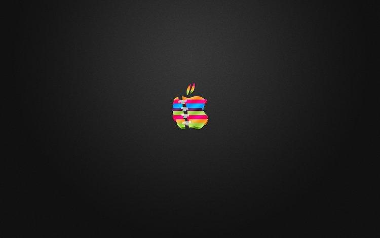 логотип, цветной, скотч, разрезан, склеен, эппл, logo, color, scotch, cut, glued, apple