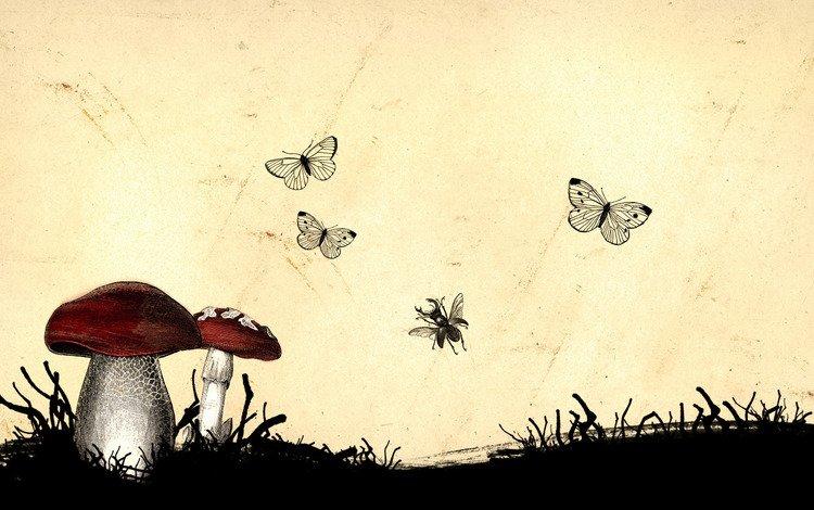 рисунок, грибы, насекомые, figure, mushrooms, insects