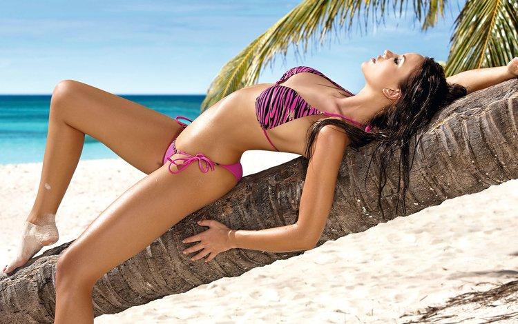 Девушка лежит на пальме на берегу океана