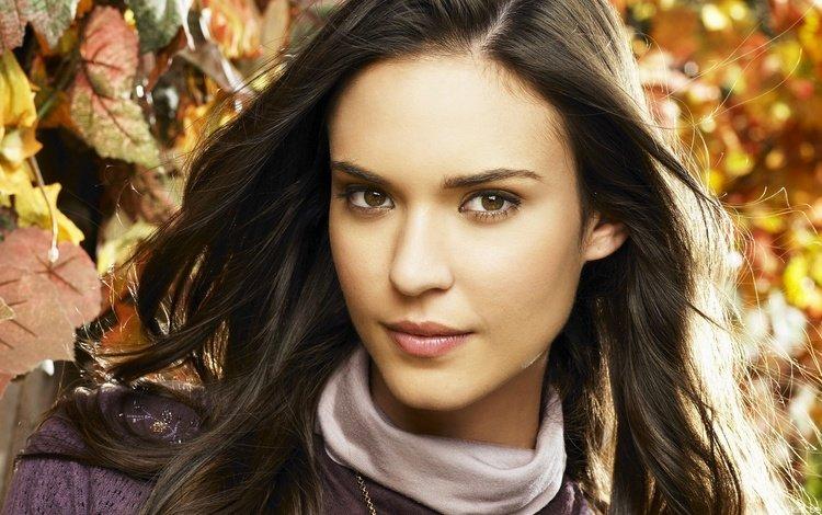 листья, девушка, портрет, взгляд, осень, модель, лицо, длинные волосы, leaves, girl, portrait, look, autumn, model, face, long hair