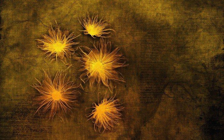цветы, рисунок, абстракция, пламя, фон, владстудио, пергамент, flowers, figure, abstraction, flame, background, vladstudio, parchment