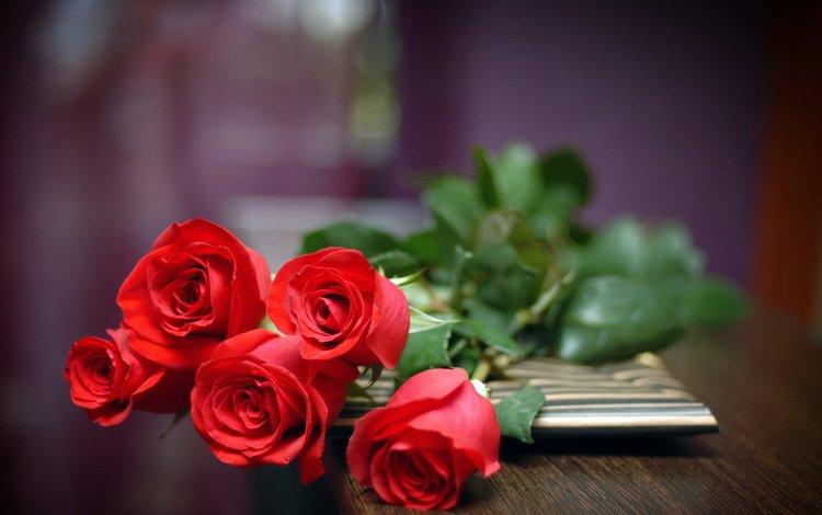цветы, розы, красные, букет, flowers, roses, red, bouquet