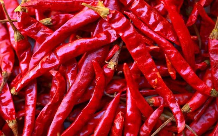 красный, чили, перец, острый, горький, жгучий, red, chile, pepper, sharp, bitter, burning