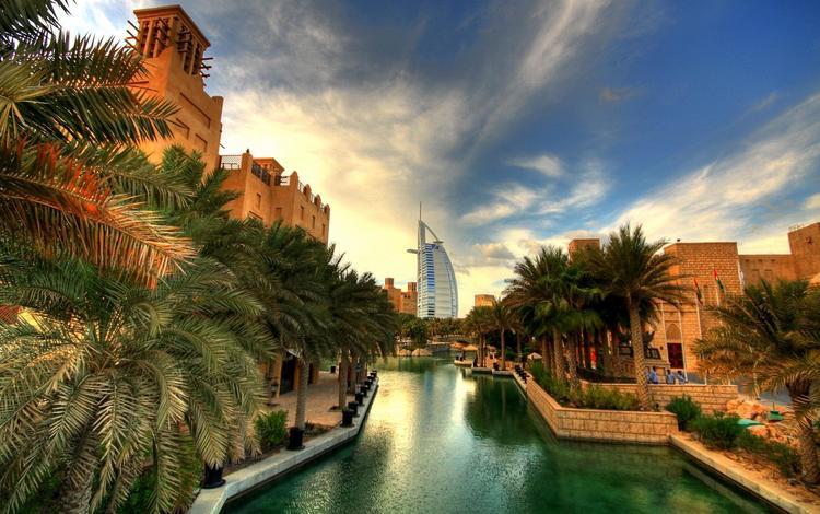 город, башня, пальмы, австралия, the city, tower, palm trees, australia