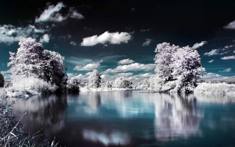 небо, отражение, облака, лёд, деревья, ели, вода, озеро, снег, лес, зима, the sky, reflection, clouds, ice, trees, ate, water, lake, snow, forest, winter