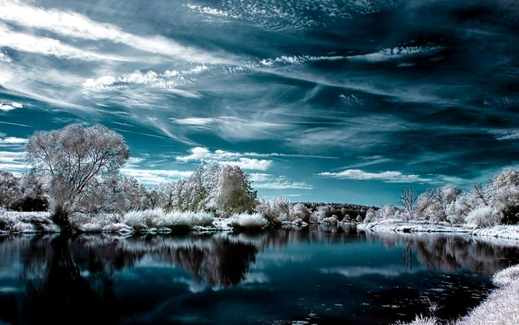 trees, lake, snow, winter, reflection, frost