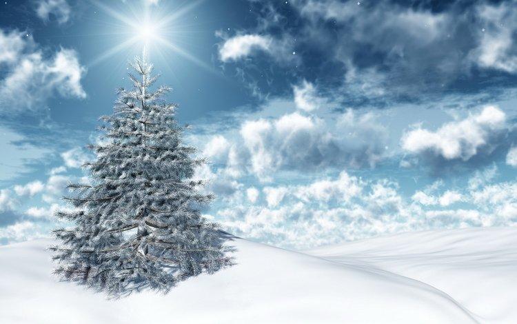 новый год, зима, new year, winter