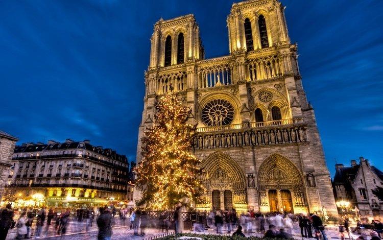 франция, собор парижской богоматери, нотр-дам-де-пари, france, notre dame cathedral, notre dame de paris
