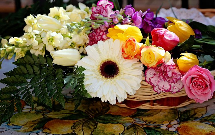 гербера, tyulpany, rozy, gvozdiki, gerbera