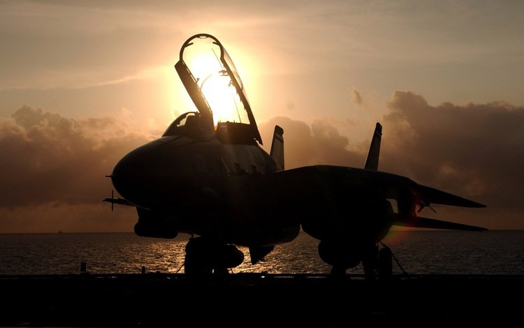 the plane, tomcat, istrebitel, zakat, f 14