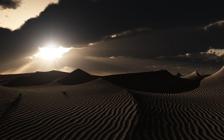 трава, облака, природа, закат, пустыня, следы, дюны, grass, clouds, nature, sunset, desert, traces, dunes