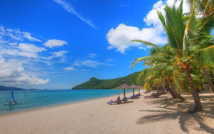 песок, пляж, пальмы, тропики, sand, beach, palm trees, tropics