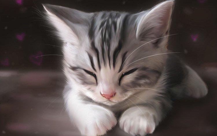 арт, рисунок, мордочка, кошка, котенок, спит, лапки, art, figure, muzzle, cat, kitty, sleeping, legs