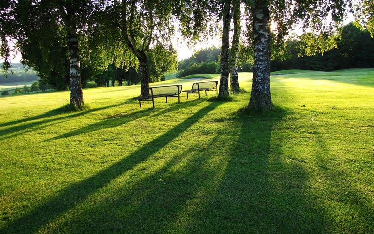 свет, скамейки, трава, тень, зелень, лужайка, пейзаж, газон, солнечный день, парк, березы, листва, лето, light, benches, grass, shadow, greens, lawn, landscape, sunny day, park, birch, foliage, summer