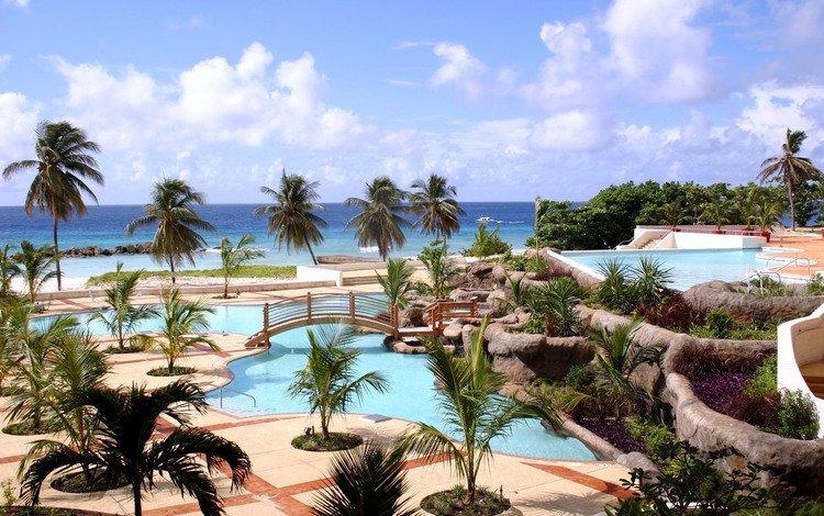 тропики, tropics