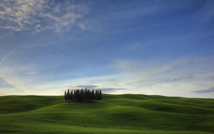 поле, field
