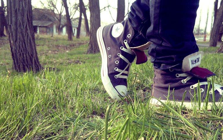 all star, trava, kedy, конверс, converse
