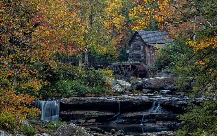 mill in autumn forest