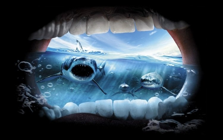 океан, ужас, крик, акулы, the ocean, horror, creek, sharks