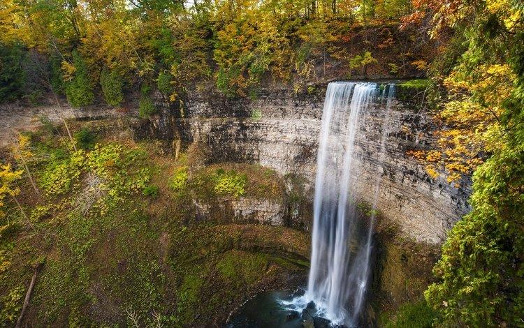 деревья, скалы, природа, водопад, осень, trees, rocks, nature, waterfall, autumn