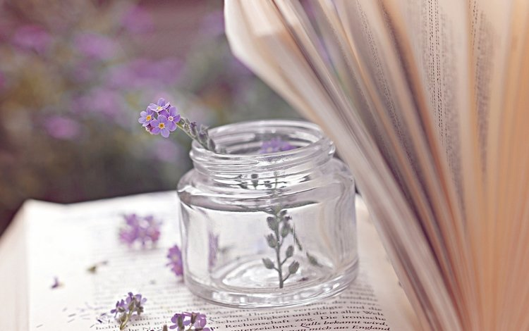 цветы, книга, банка, страницы, баночка, пузырёк, flowers, book, bank, page, jar, bubble