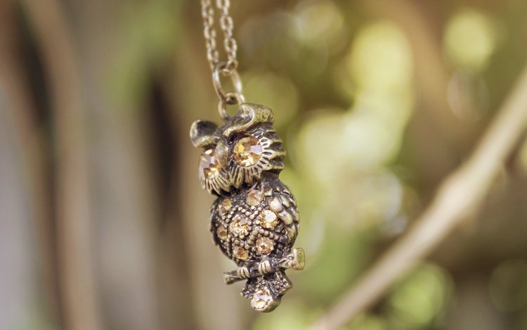 сова, украшение, цепочка, подвеска, owl, decoration, chain, suspension