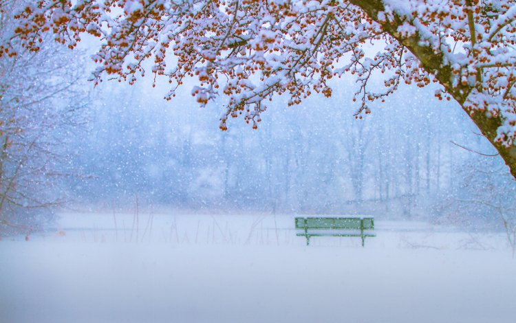 зима, парк, скамейка, снегопад, winter, park, bench, snowfall