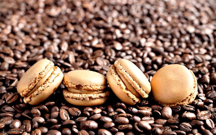 зерна, кофе, сладкое, печенье, десерт, макарун, grain, coffee, sweet, cookies, dessert, macaron