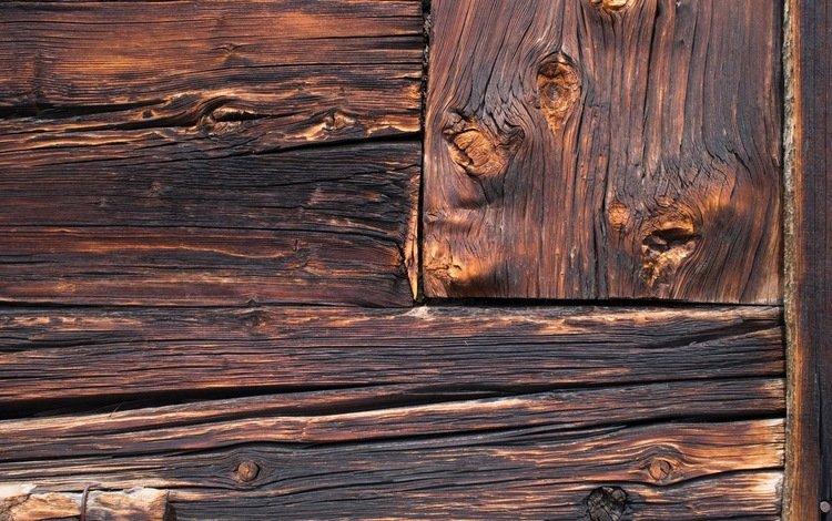 дерево, стена, доски, tree, wall, board
