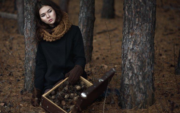 лес, девушка, шишки, чемодан, forest, girl, bumps, suitcase