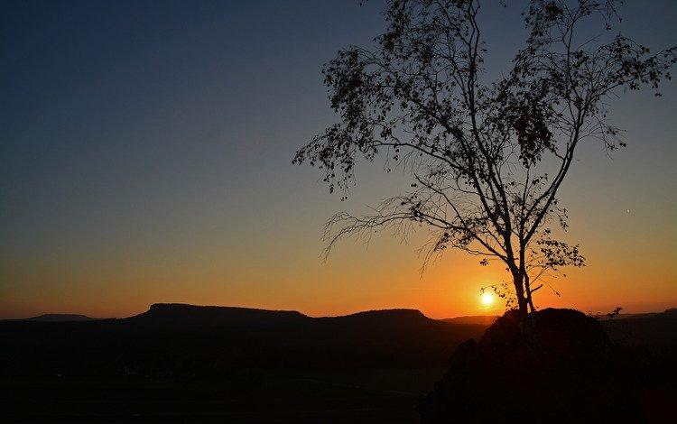 небо, солнце, дерево, закат, силуэт, the sky, the sun, tree, sunset, silhouette