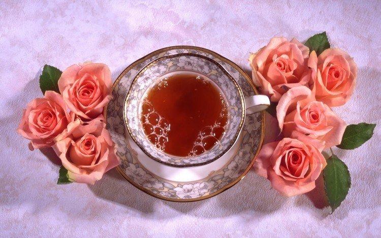 цветы, розы, блюдце, чашка, чай, натюрморт, flowers, roses, saucer, cup, tea, still life