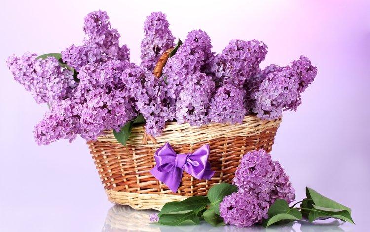 цветы, листья, ветки, фиолетовый, весна, корзина, сирень, бант, flowers, leaves, branches, purple, spring, basket, lilac, bow